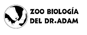 Ver Zoo Biologia del DR. Adam online