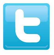 OFICIAL DE 8 AL DIA Per altra banda, tenim el twitter.