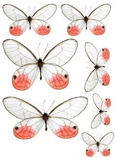 Coeur de beurre scrapbooking et fantaisies plein de papillons imprimer gratuits - Silhouette papillon imprimer ...