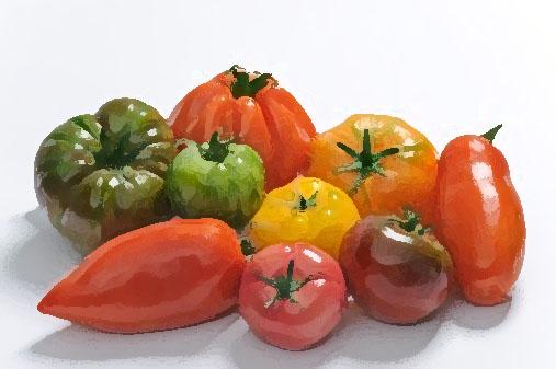 La tomate jean pierre montanay reporter de go t - Tomate est un fruit ...