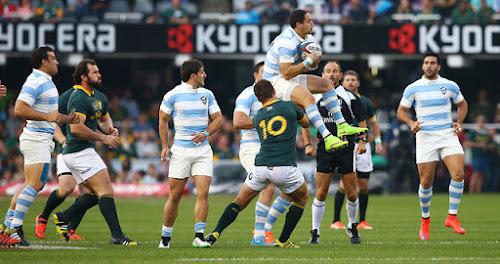 Histórico triunfo de Los Pumas ante Sudáfrica