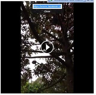 _4_Klik Show Video URL