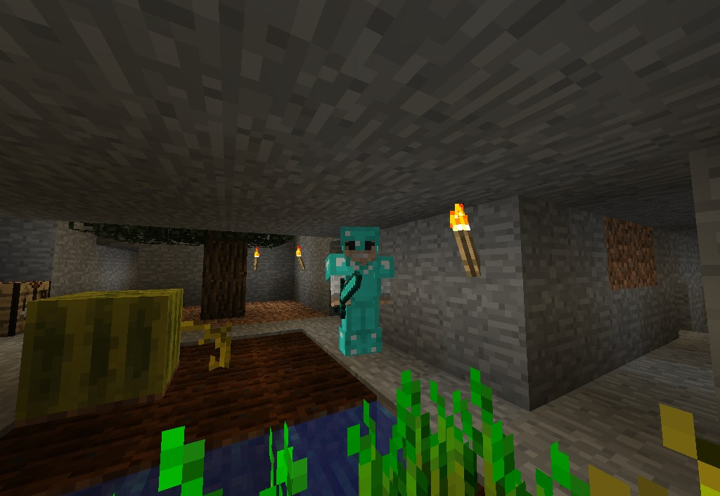 how to become admin in minecraft