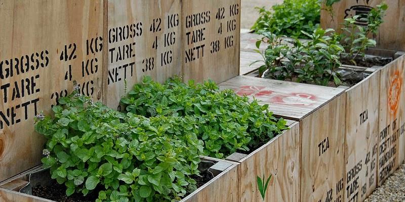 Havefolket: kreativt genbrug   ideer til haven