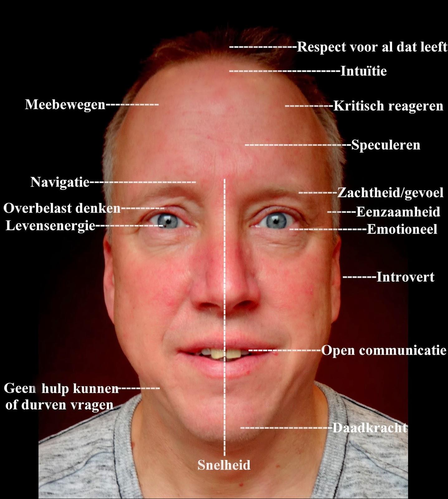Open gezicht betekenis