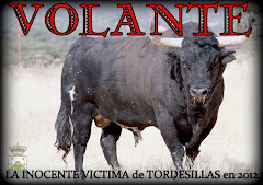 La crueldad de Tordesillas en 2012