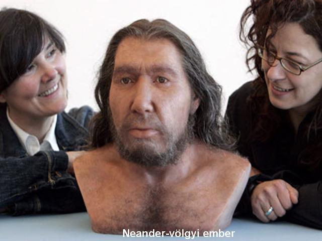 a neander-völgyi ember rekonstrukció