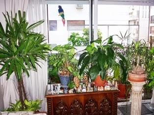SALUD PLANTAS INTERIORES Y EXTERIORES