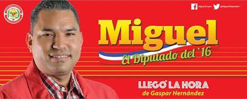 Miguel Diputado
