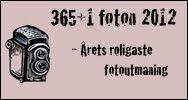 365+1 foton 2012