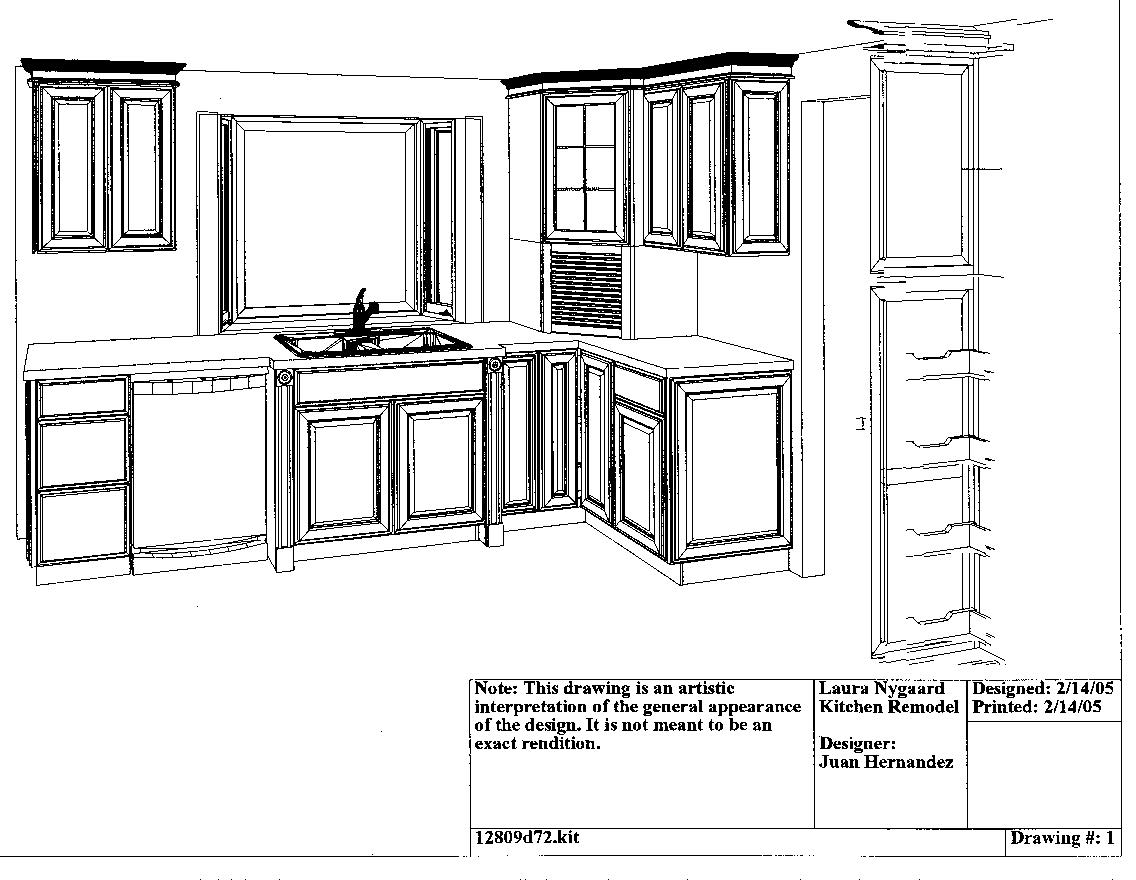 So I met with a designer at HD and redesigned the kitchen.