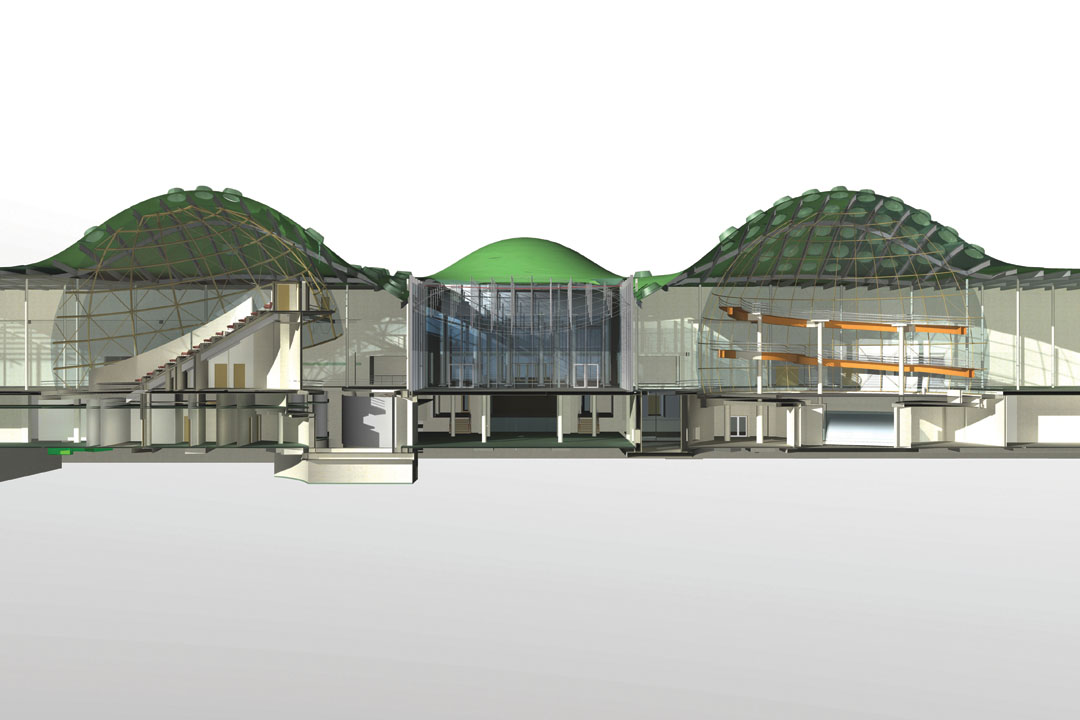 Main Materials Of California Academy Of Science Building
