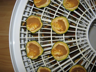 zucchini chips after dehydration