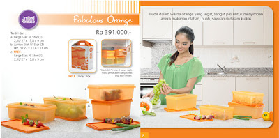 Tupperware Fabulous Orange