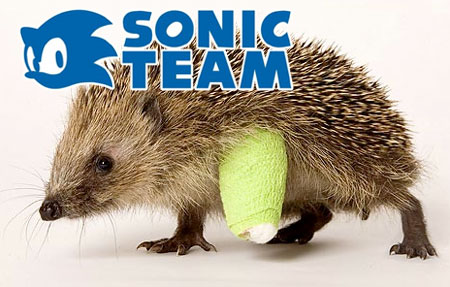 Photo of a hedgehog with leg in plaster, with Sonic Team written above it.