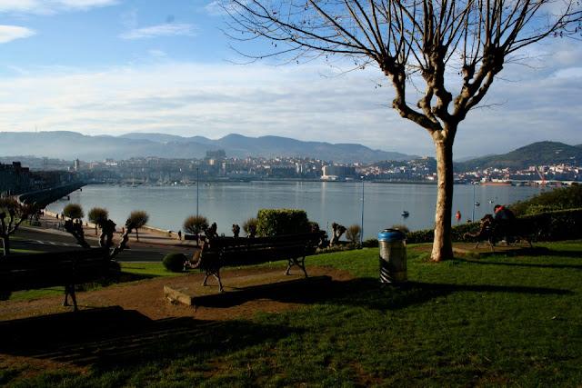 Getxo, Neguri, Bilbao, Bilbao port, Plane trees, pollarding sycamores