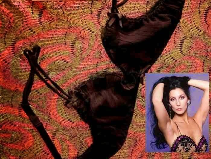 Cher's Bra