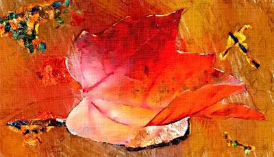 fulla de tardor (Esmeralda Vallverdú)