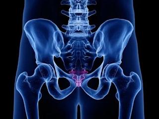 Dor no último osso da Coluna Vertebral