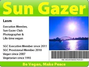 Sun Gazer Club