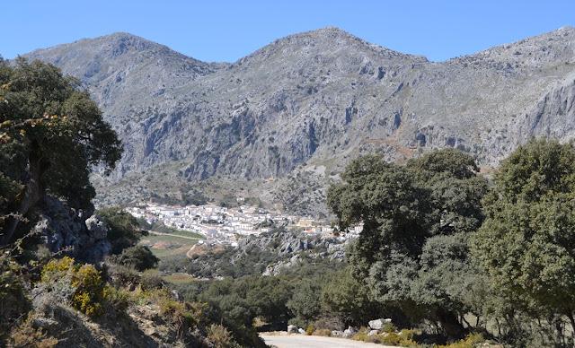 II KDD-Ruta Sierra de Cadiz 53+VILLALUENGA+DEL+ROSARIO