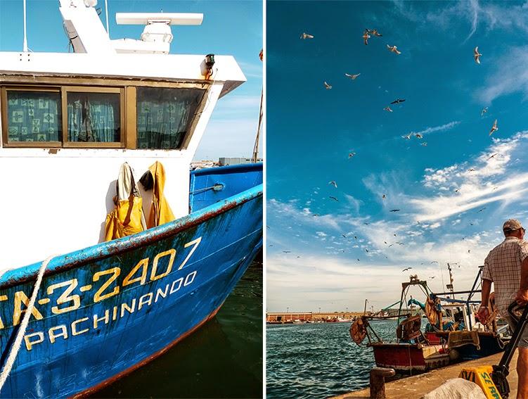 Barco con chubasqueros amarillos; aves marinas esperando que descarguen pescado