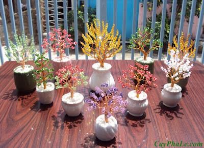 Vườn cây pha lê Cát Tường trong nắng