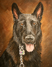 Black German Sheppard
