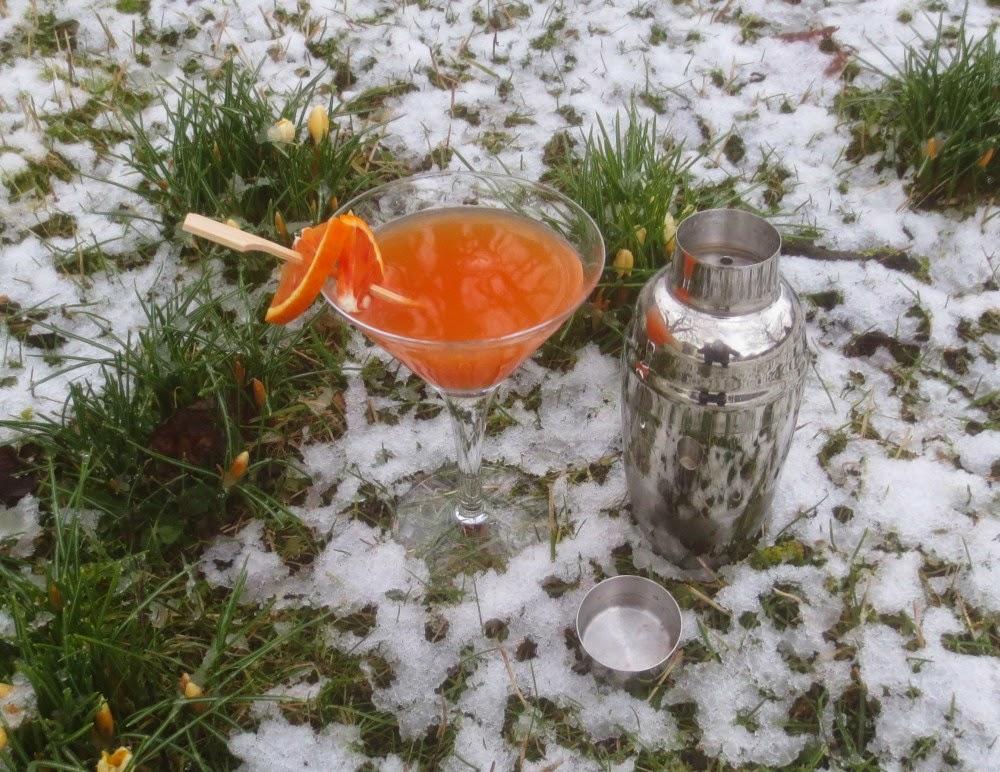 Blood Orange Daiquiri - Blutorangen-Daiquiri