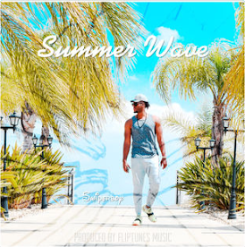 Summer Wave - Swiperboy