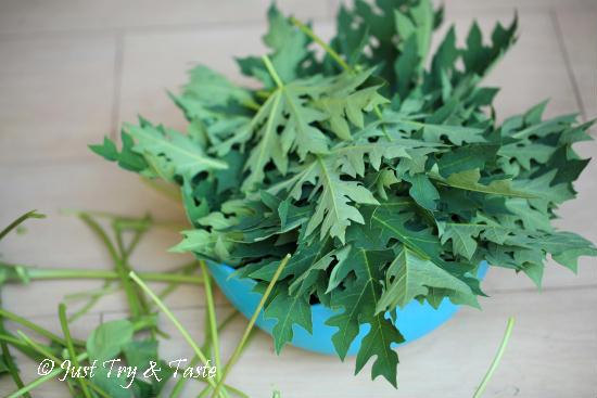 resep tumis daun pepaya dengan ikan asin JTT