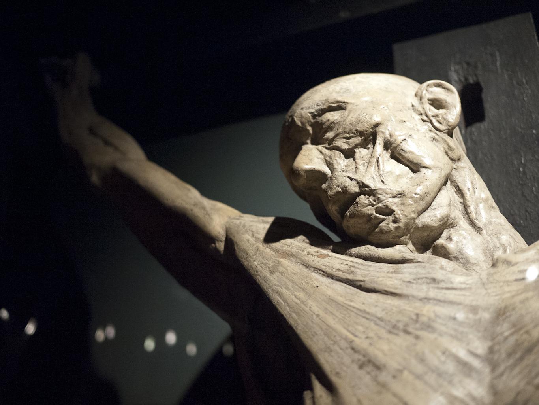 Morbid Anatomy: Must-See Exhibition of Astounding Anatomical ...