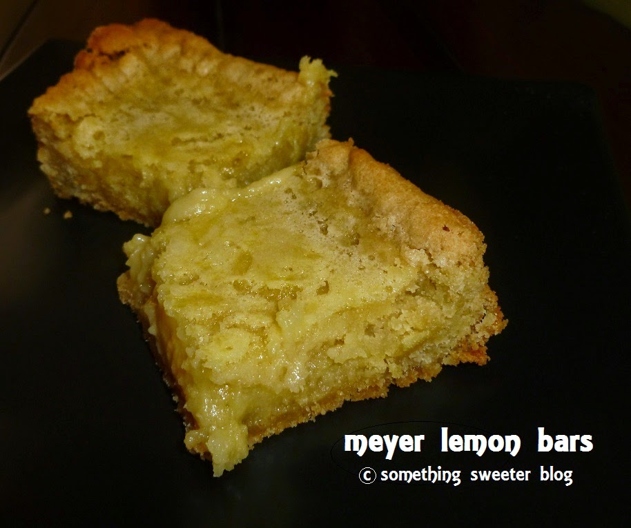 Something Sweeter - allergy friendly food blog: Meyer ...