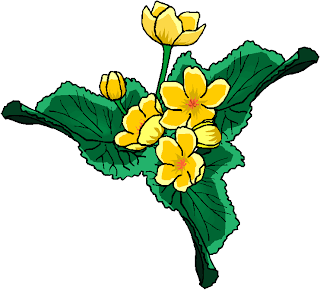 Beauty Yellow Flowers Clipart
