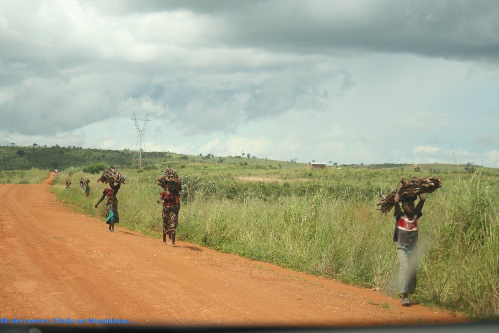 O SuSo em Moçambique