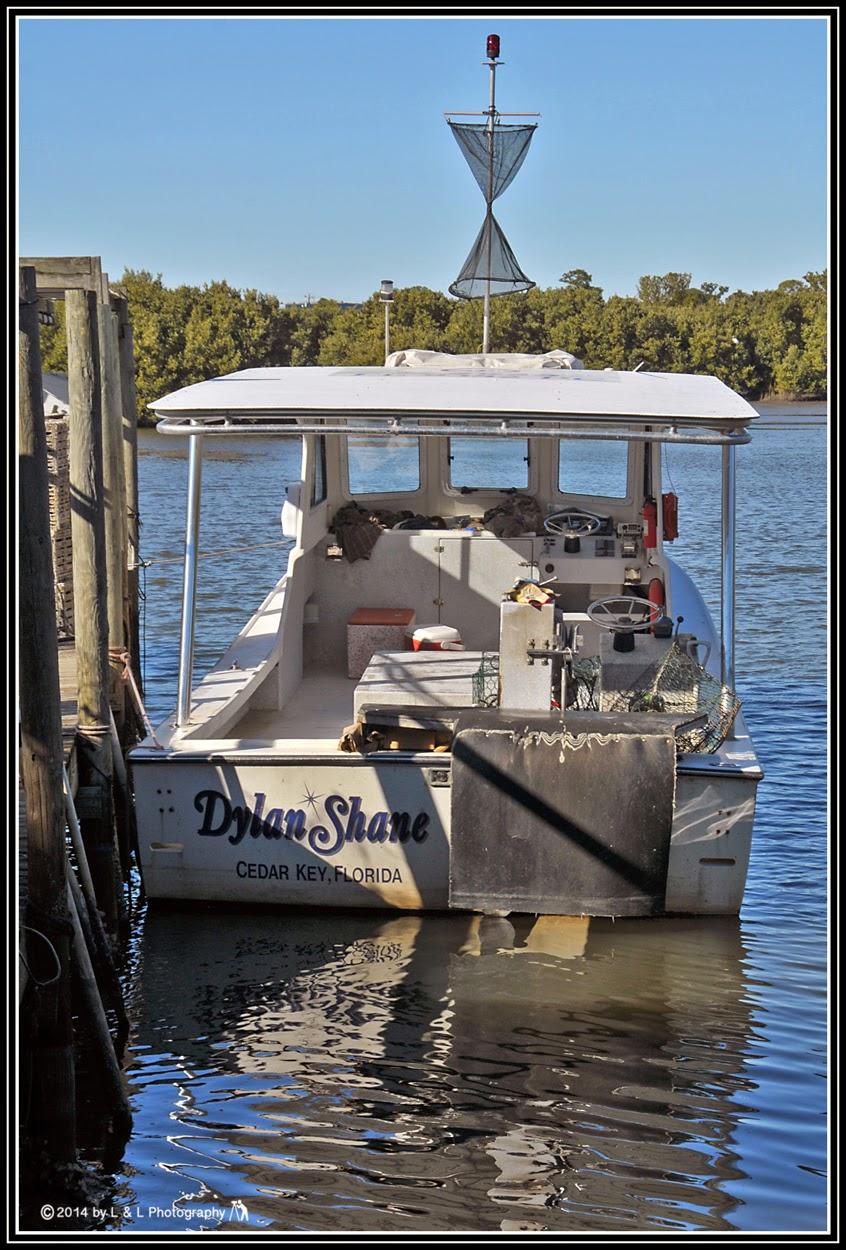 Cedar key florida photos let 39 s go fishing for Cedar key fl fishing