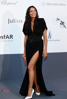 Rosario Dawson Pictures in Evening Dress at amfAR�s 20th Cinema Against AIDS Event in Cannes 0004