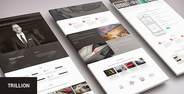Premium Multipurpose WordPress Theme