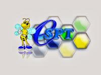 Tutorial e-SPT PPN 1111
