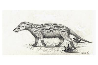 Cladosictis marsupiales extintos de argentina
