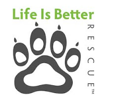 Life is Better Rescue