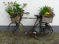 Bicicleta Velhinha