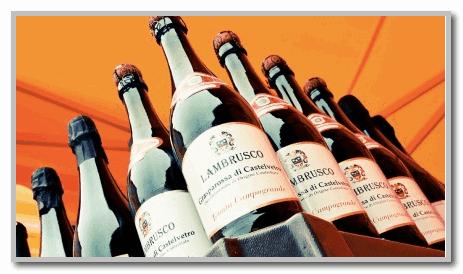 ламбруско вино