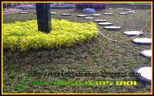 http://tukangtamanqu.blogspot.com/2015/01/jasa-tukang-taman-tukang-taman.html