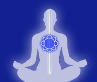 perle nel tempo progetto vajra meditazione maestro fiore loto chakra cuore