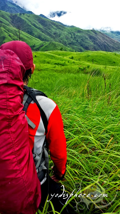 Hiker trekking grassland trail of Mt. Cinco Picos in Zambales  hover_share