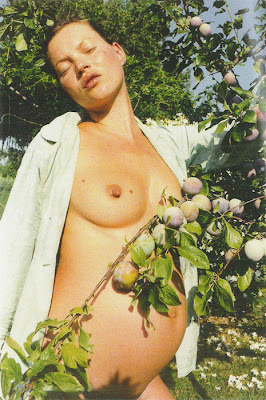 Kate Moss desnuda y embarazada