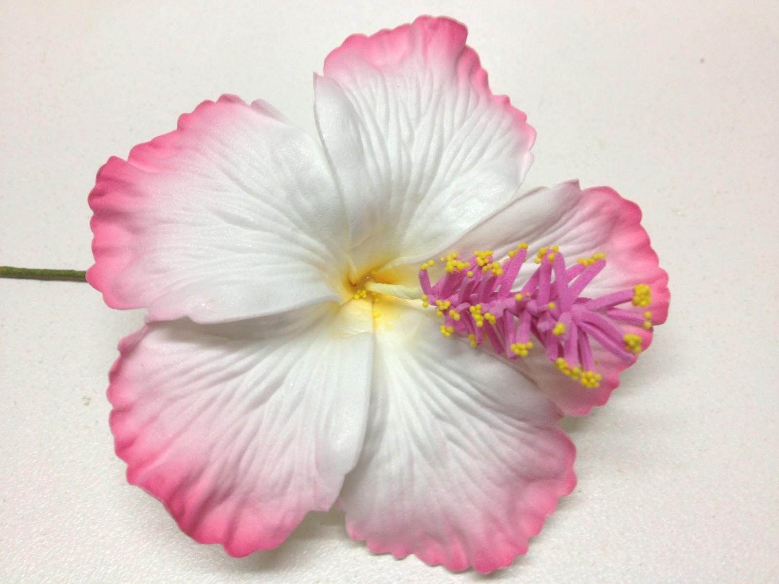Norfolk bath and body island flower hair pins and clips island flower hair pins and clips izmirmasajfo