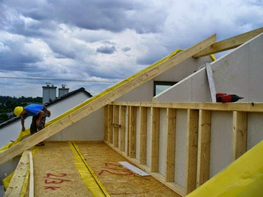çatı temizliği