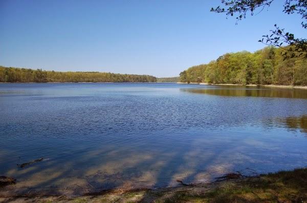 Malownicze Jezioro Góreckie